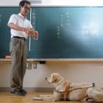 新井淑則(ヨシノリ)先生の嫁や大学など経歴と網膜剥離の原因について!